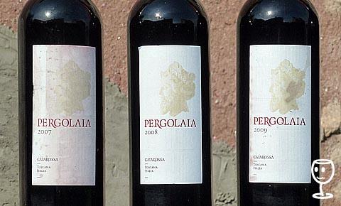 P1110033 3x Pergolaia Etiketx