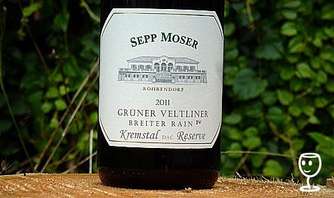 P1110350 Moser Breiter Rain 2011