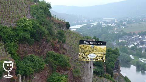 P1140539 cEDULE dR hERMANN