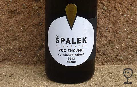 P1150487 VZ 2013 VOC Znojmo Špalek