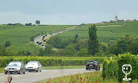 P1170377 Alsace za Ribeauvillé