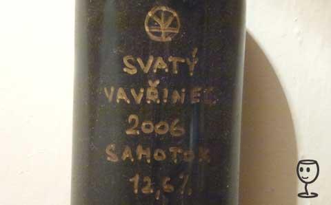 P1180941 SV 2006 Šusta