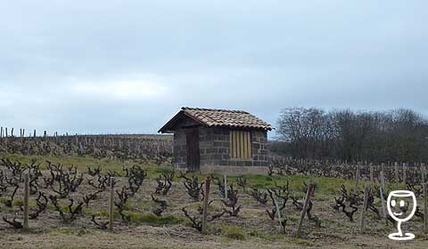 P1190782 bouda za Fleurie směrem na Moulin