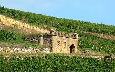 BLOG P1250003 Sklep nebo domek ve vinici Westhalten