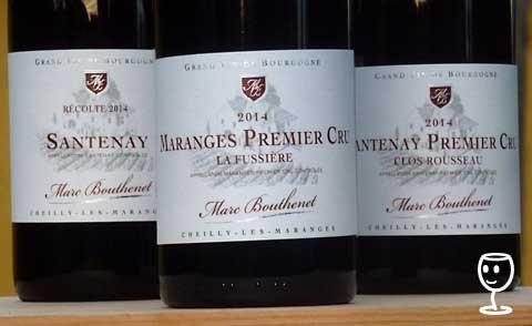 P1270668 3 burgundy Bouthenet