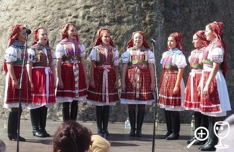 BLOG P1290903 Kuželovské zpěvulky
