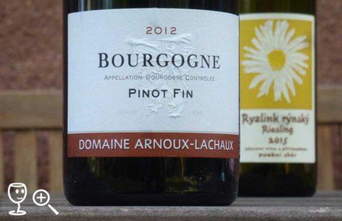 p1300319-pinot-fin-2012-arnoux-a-rr-robek