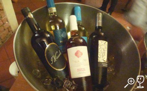 BL P1320991 bílá vína