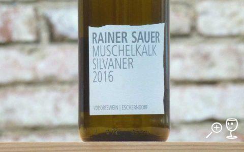 BL P1340621 Muschelkalk Rainer Sauercopy