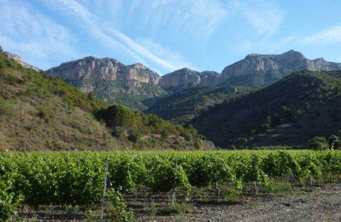 BL pohoří Montsant, ale vinice Priorat