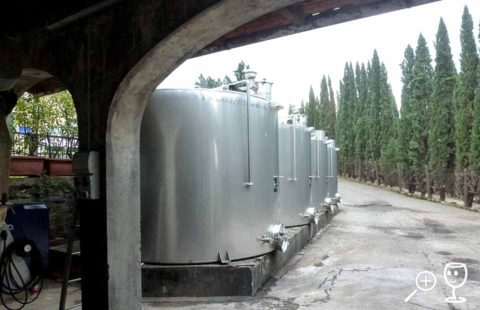 BL P1350125 Travignoli tanky venku