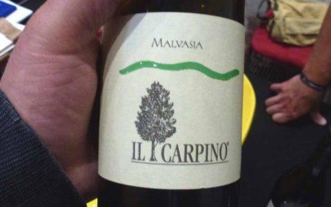 BL P1370079 Il Carpino Malvazija