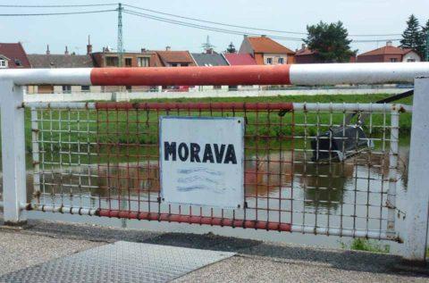 BL P1370379 Morava