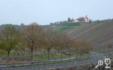 BL P1410341 Vogelburg od Estheimu